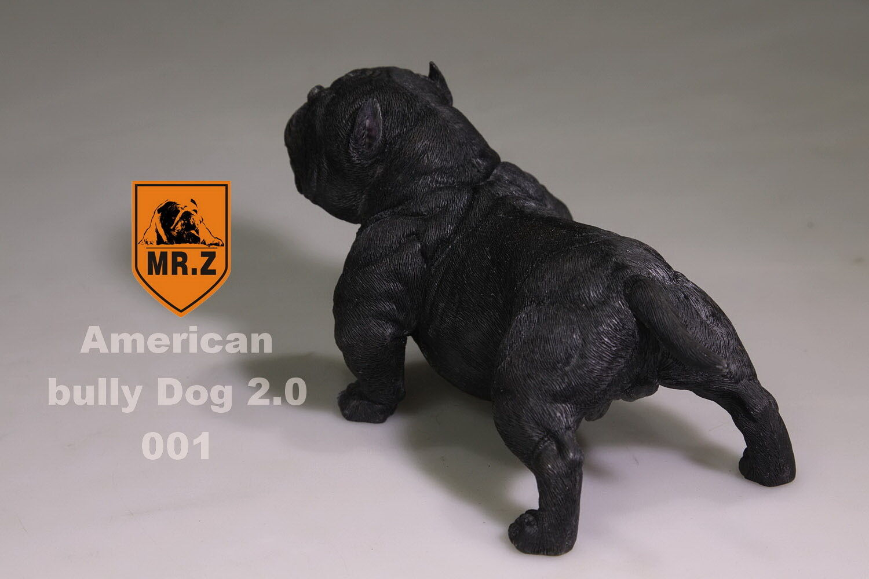 1 6 Scale for 12  aucion figure  Mr.Z  American bully pitbull light colour Bk 01