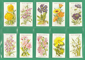 Image Is Loading FLOWERS 50 SETS OF WILLS 039 OLD