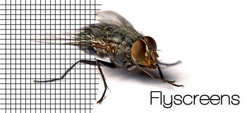 Meterware Fliegengitter Insektenschutz Fiberglas anthrazit Fliegennetz