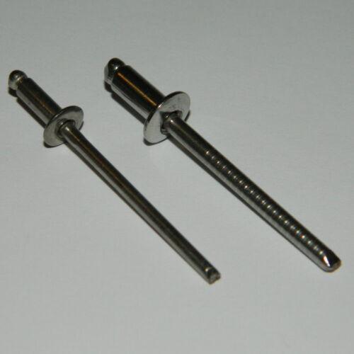 100 Stk Edelstahl Standard Blindnieten 4,8x8 Flachkopf  A2//A2    VA   V2A