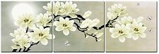 White Magnolia Flower Wall Art Picture Print Canvas Framed Home Hang Decor Gift