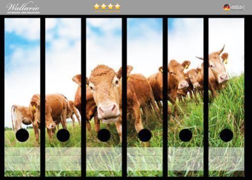 Kühe Sommer Weide Tiere Wallario Ordnerrücken selbstklebend 6 breite Ordner