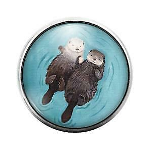 Otters 18MM Glass Dome Candy Snap Charm GD1347