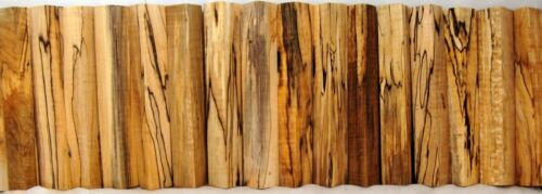CURLY Spalted MAPLE WOOD Lathe TURNING PEN BLANK AAA Figure Color Blackline Scm1