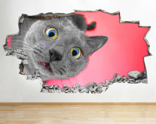 BB270 Funny Cat Face Animaux Mignon Smashed Applique Murale 3D Art Stickers Vinyl Chambre
