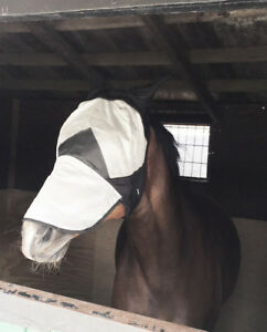NEW-Great-Quality-FLY-MASK-HOOD-With-Nose-amp-ears-WHITE-FULL-COB-PONY-Sale-Price