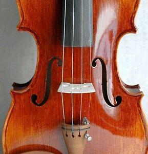 Agressif Magnifique Ancien Style Italien Concert Violon 4/4 Carlo Bergonzi 1736-afficher Le Titre D'origine Disponible Dans Divers ModèLes Et SpéCifications Pour Votre SéLection