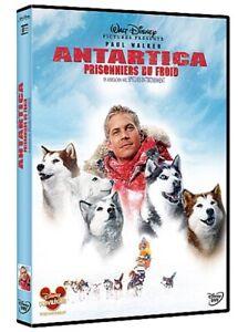 Antartica-prisonniers-du-froid-DVD-NEUF-SOUS-BLISTER-Paul-Walker