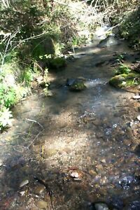 20 ACRE RECREATIONAL UNPATENTED PLACER MINING CLAIM - SOUTHERN OREGON