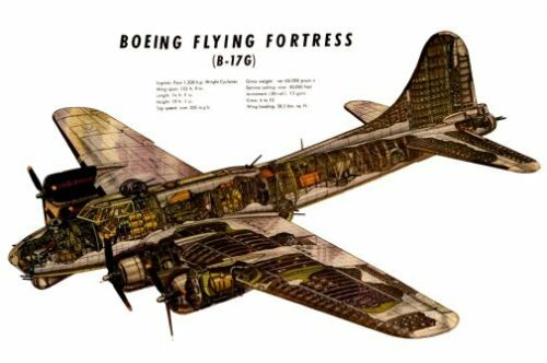 B17G Cutaway Military Aircraft Poster Large 24inx36in