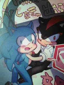 DOUJINSHI-SONIC-THE-HEDGEHOG-Shadow-X-SONIC-A5-32-pagine-Cimitero-Peloso
