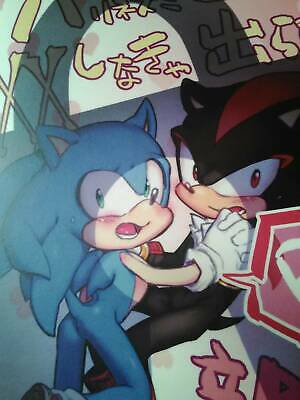 SONIC THE HEDGEHOG Doujinshi A5 88pages Palcoscenico Blue-Black Discord Comp
