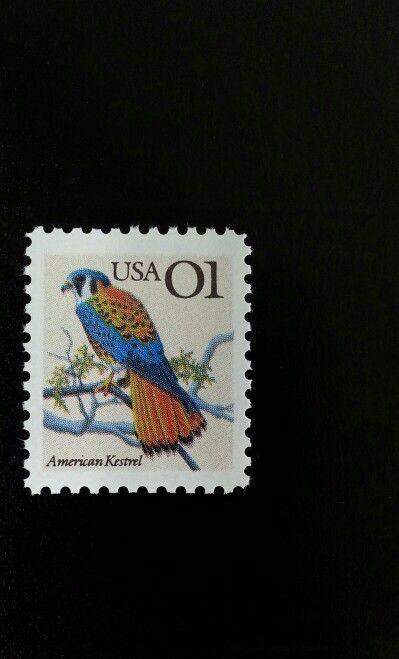 1991 1c American Kestrel Scott 2476 Mint F/VF NH