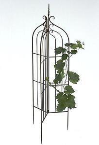 support pour plantes grimpantes 120033 pliable treillis. Black Bedroom Furniture Sets. Home Design Ideas