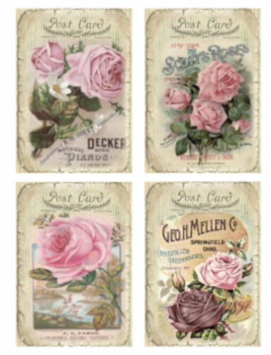 Vintage Image Victorian Rose Postcard Seed Catalog Labels Transfers Decal LAB445