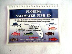 Florida Saltwater Fish Id By Jennifer Marchetti Kensler And Ray Kensler 9780974909110 Ebay,Stargazing Lily Flowers