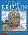 The British Museum Colouring Book of Ancient Britain by Richard Parkinson, Patricia Hanson, Stephen Crummy, John Green (Paperback, 2007)