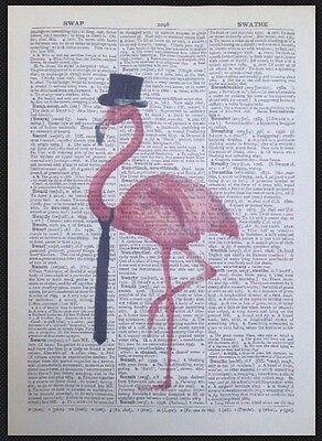 Flamant Rose Cite excentrique drôle imprimer page dictionnaire vintage Mur Art Image