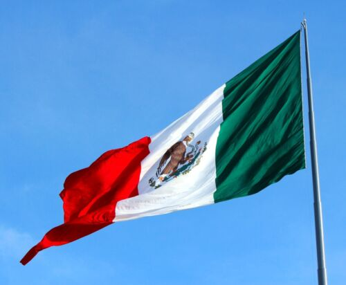 3*2/'' Feet Polyester Mexico Flag Mexican Country Indoor Outdoor Banner Pennant