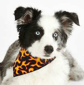 Pet-Pooch-Tie-Dog-Bandana-039-s-Many-Designs-and-Sizes