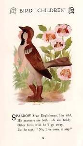 Sparrow-1912-Vintage-Bird-Children-Art-Print-by-M-T-Ross