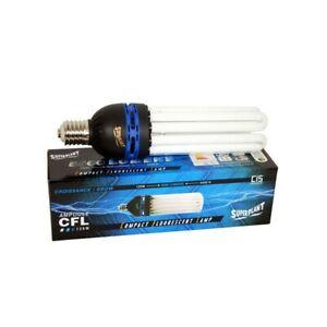 AMPOULE CFL 125W SUPERPLANT 6400K CROISSANCE
