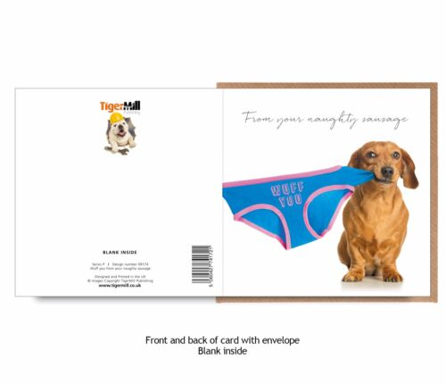 Valentine card FROM YOUR NAUGHTY SAUSAGE Dachshund dog pulls underwear Birthday