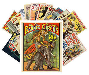 Postcards-Pack-24-cards-Vintage-Circus-Posters-Animal-Show-Horses-CC1012