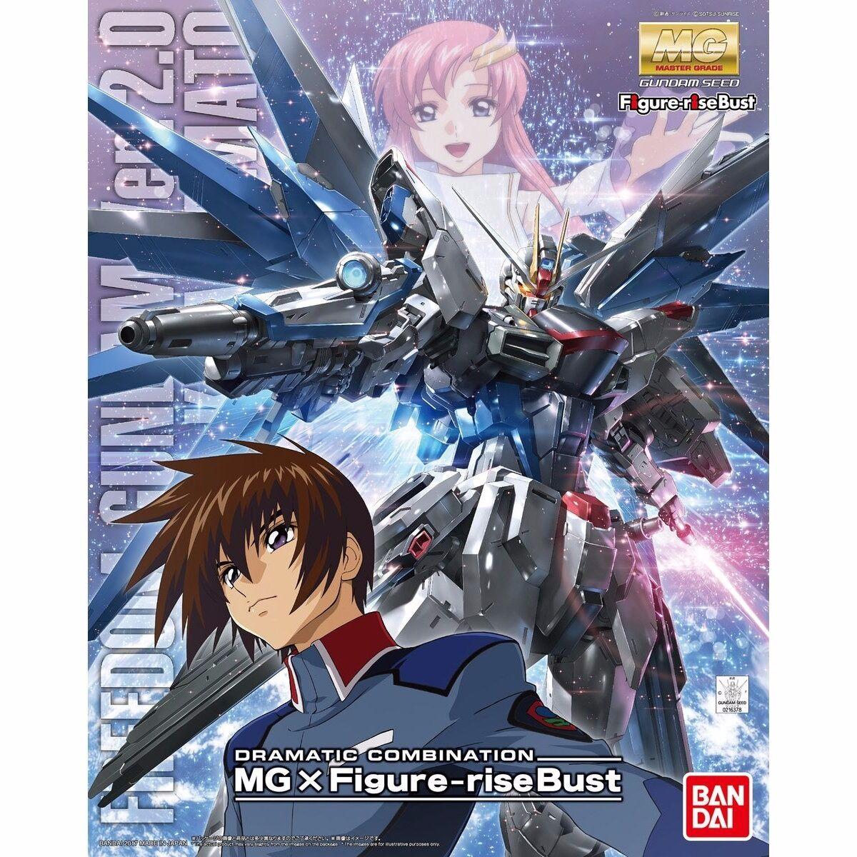 Beai Drammatico Combinazione gratuitodom Gundam 2.0 & cifra-Rise autobusto Kira Kit