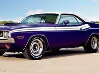 71 Dodge Challenger No R/t Side Stripes Kit Decals Stripe 1971 gloss Black