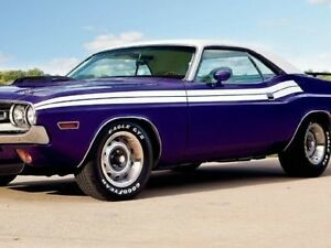 71 Dodge Challenger No R T Side Stripes Kit Decals Stripe 1971 Matt