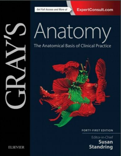 PDF E-Book digitale Gray/'s Anatomy The Anatomical Basis of Clinical Practice,