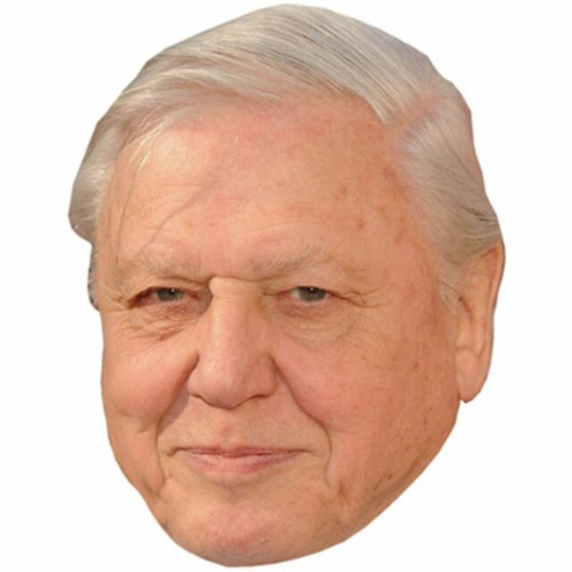 David Attenborough Celebrity Mask, Card Face and Fancy Dress Mask