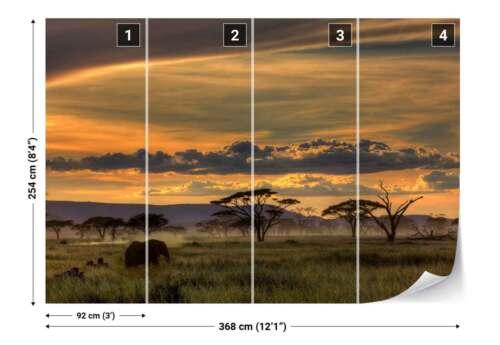1X-42438 Savanna Trees Elephant Landscape Photo Wallpaper Wall Mural