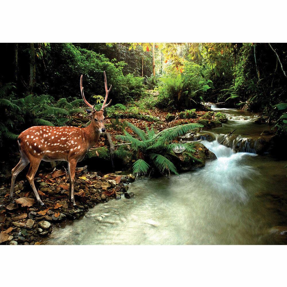 Fototapete Wald Hirsch Geweih Natur Bach grün braun liwwing no. 399