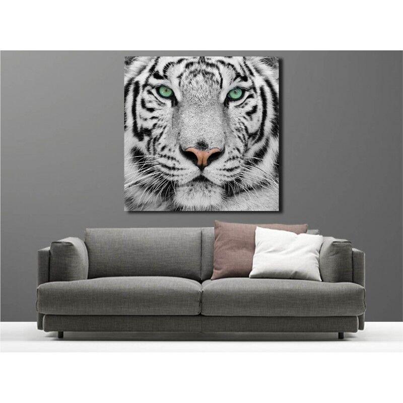 Gemälde Stoff Deko Quadratisch Tiger white 28671337