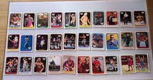 LOTTO-30-WWF-WRESTLING-CARD-MERLIN-1991