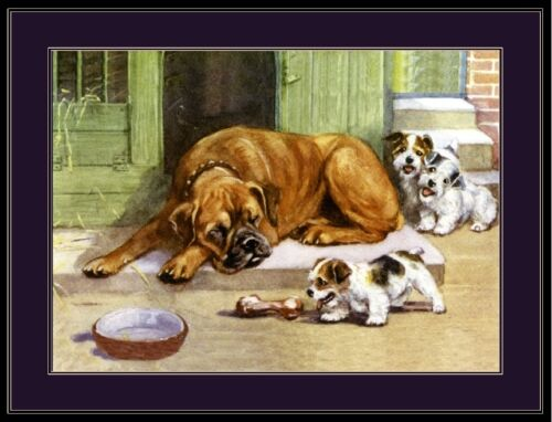 English Picture Print Boxer Dog Sealyham Terrier Dogs Puppy Vintage Poster Art
