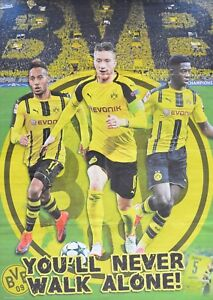 Details Zu Borussia Dortmund A1 Poster Xxl 80 X 55 Cm Fussball Bvb Marco Reus Neu