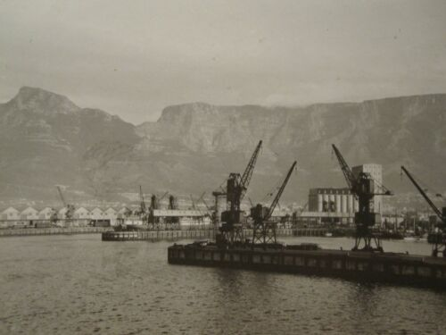 ANTIQUE 1920s CAPE TOWN SOUTH AFRICA HARBOR SHIP DOCK INDUSTRY SIGN RSA PHOTO