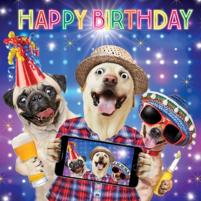 Birthday Card Happy Selfie Dogs Funny Goggly 3D Moving Eyes