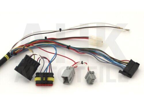 Elektrosatz spez 13pol Für Nissan Juke 10-14 Kpl.