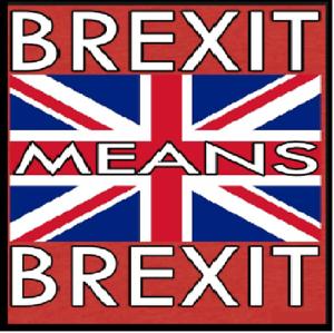 dk Brexit Cojín Tejer pattern.PDF descargar o voy a publicar grueso o Aran.