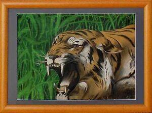 Tiger datieren Seiten Homosexueller Typ, der gerade Mädchen datiert