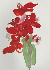 "Georgia O'Keeffe,  ""Red Canna""   Botanical, Flower,   Art Print---"