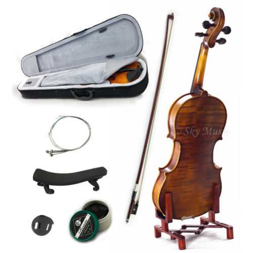 NEW Solid Wood Intermediate Plus 1//10 Violin VN302 w Case Bow Rosin String