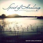 Spirit of Healing by David Dolatowski (CD, 2011, CD Baby (distributor))