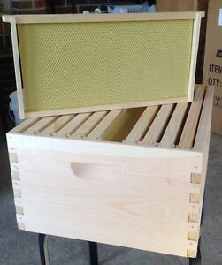 Honey Super Special 10 FRAME Deep Frames & Foundation,Assembled