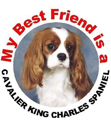 2 Cavalier King Charles Spaniel (Blenheim) Dog Car Stickers By Starprint