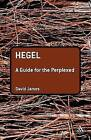Hegel: A Guide for the Perplexed by David James (Paperback, 2007)